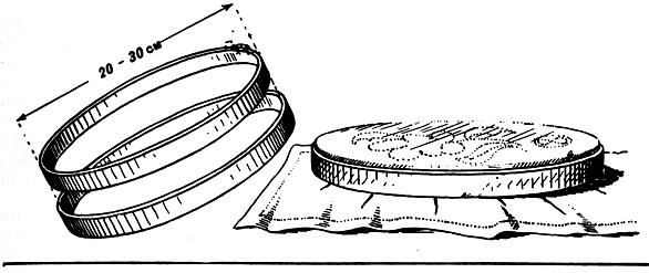 Рис. 187