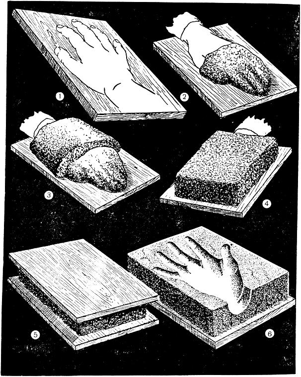 Рис. 249